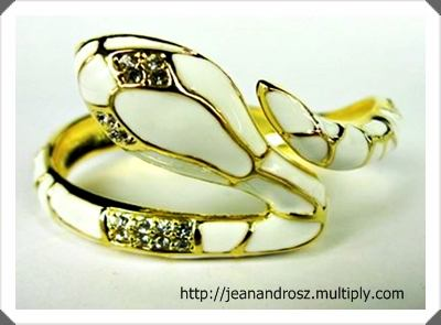 Jean and Rosz Snake Bangle